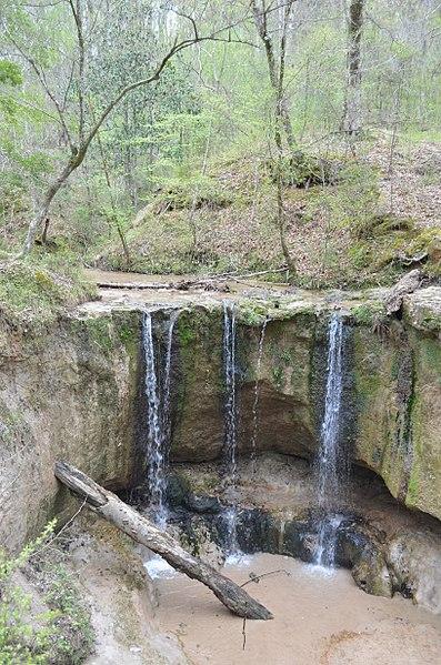 File:Clark creek natural area ms.jpg