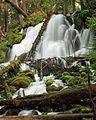 Clearwater Falls, Oregon.jpg