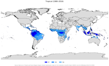 enfermedades infecciosas y parasitarias mas comunes
