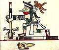 Codex Laud p.17 detail Amamalocotl.jpg