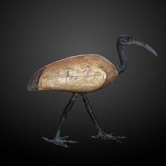 Coffin for an ibis-MAHG 20148