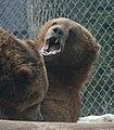 Columbus zoo (2302718507).jpg