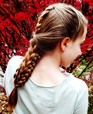 French braid - Image: Combo Braid