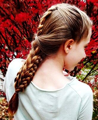 French braid - Image: Combo Braid