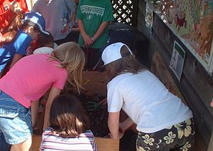 Students learning about vermicomposting