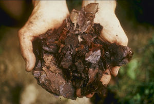 Garden waste for composting