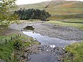 Confluence on the Ettrick Water - geograph.org.uk - 1547131.jpg