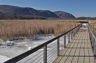 Garrison, New York - Constitution Marsh in winter