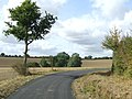 Country Road And Footpath - geograph.org.uk - 1520320.jpg
