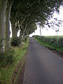 Country Road Near Langton Bridge - geograph.org.uk - 245415.jpg