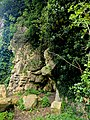Creswell Gorge, Creswell Craggs, Notts (120).jpg