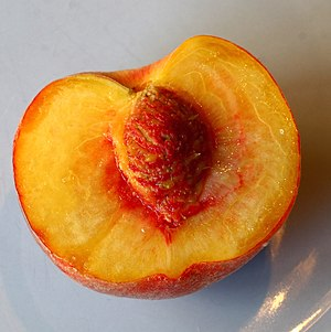 juicy peach half