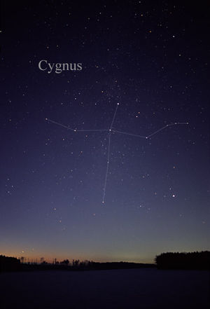Cygnus (constellation) - The constellation Cygnus as it can be seen by the naked eye, with the Northern Cross in the middle.