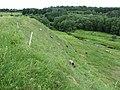 Dūkštų sen., Lithuania - panoramio (191).jpg
