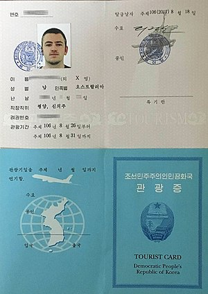ds-260 immigrant, b1 b2, italy schengen, on japanese visa application form