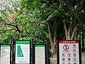 Daan Forest Park 大安森林公園 - panoramio (5).jpg