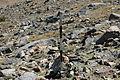 Dana Plateau Plot 003 (11878659735).jpg