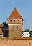 Dansker in Malbork, part 2.jpg