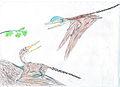 Darwinopterus EF.jpg