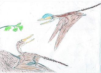 Tiaojishan Formation - Darwinopterus modularis