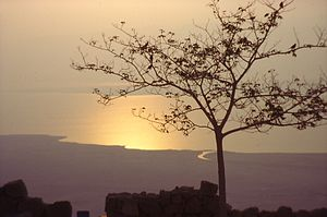 Dead Sea Sunrise.jpg