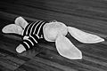 Dead rabbit (15042797091).jpg