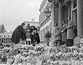 Defilé langs paleis Soestdijk ter gelegenheid van de verjaardag van koningin Jul, Bestanddeelnr 907-7256.jpg