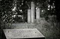 Denkmal der 53 1.jpg
