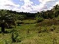 Desa Karya Mulya - panoramio.jpg