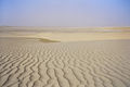 Desert Qatar.JPG