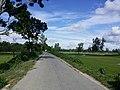 Dhunat Upazila, Bangladesh - panoramio (5).jpg