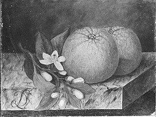 Oranje appelen