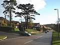 Dinan Way, Exmouth - geograph.org.uk - 1075842.jpg