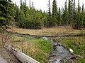 Discovery Ridge - Spring - panoramio (1).jpg