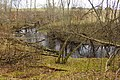 Divupe - panoramio (1).jpg