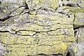 Doboshanka cracked stone.JPG