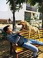 Dog Love 12 50 48 534000.jpeg