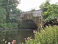 Dowley Gap aqueduct - geograph.org.uk - 33825.jpg