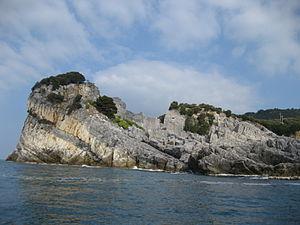 Palmaria (island)