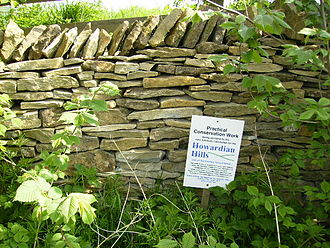 Howardian Hills - New stone walling conservation work in the Howardian Hills AONB