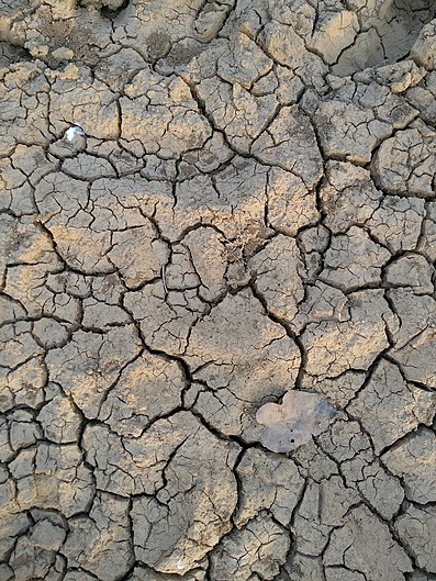 Dry mother earth.jpg