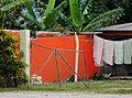 Drying Towels (31259963572).jpg