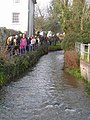 Duck Race, River Lim (3) - geograph.org.uk - 1184516.jpg