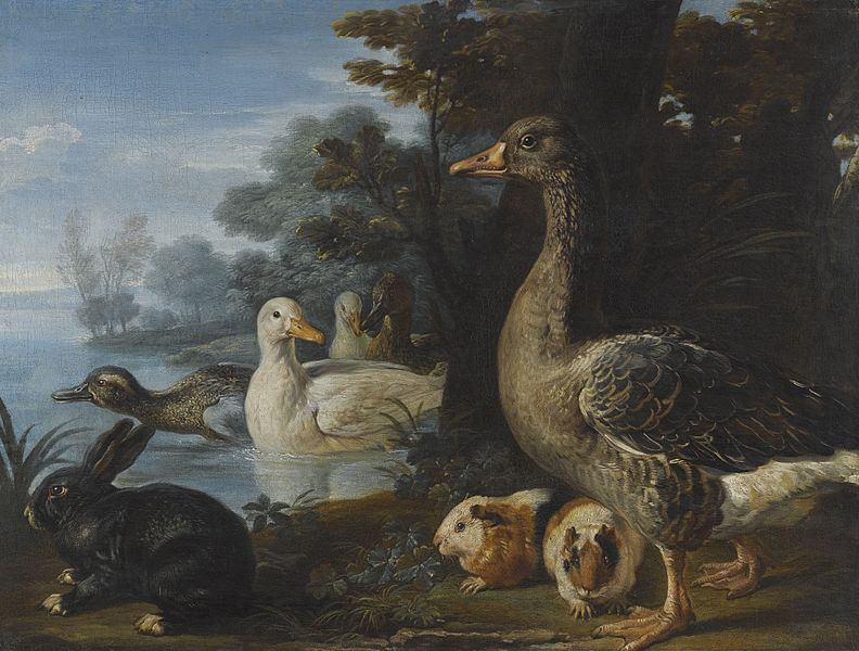 File:Ducks, Guinea Pigs and a Rabbit in a Wooded Landscape Beside a Lake by David de Coninck.jpg