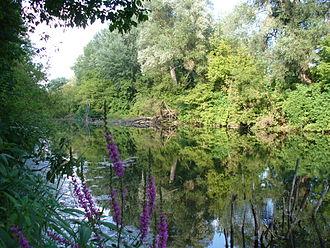 Dunajské luhy Protected Landscape Area - Floodplains and forests near Bratislava's borough Podunajské Biskupice and the Senec District