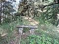 Einsame Bank auf der Wanderdüne - panoramio.jpg