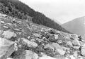 Einzelgefechtsschiessen im Gebirge - CH-BAR - 3238770.tif