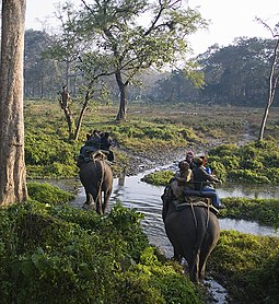 The Jaldapara National Park in West Bengal, India, is a Habitat Management Area (Category IV). Elephant safari.jpg