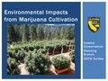 Environmental Impacts from Marijuana Cultivation.pdf