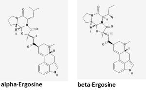 Ergosine - alpha and beta ergosine